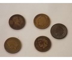 5 Pennies (4 Indian head and 1 Lincoln)