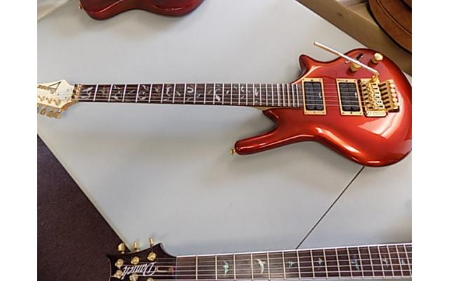 Daniele Guitar With Floyd rose, Ibanez Pick ups, and Ibanez neck - 1/7