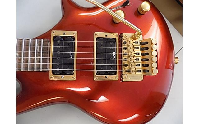 Daniele Guitar With Floyd rose, Ibanez Pick ups, and Ibanez neck - 2/7