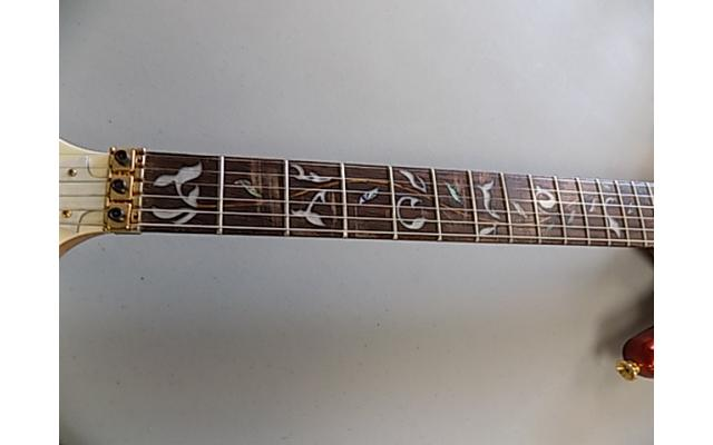 Daniele Guitar With Floyd rose, Ibanez Pick ups, and Ibanez neck - 3/7